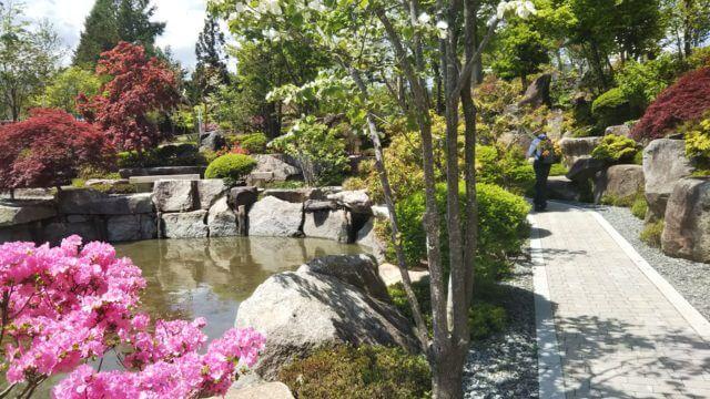 和風に見えるハーブ庭園