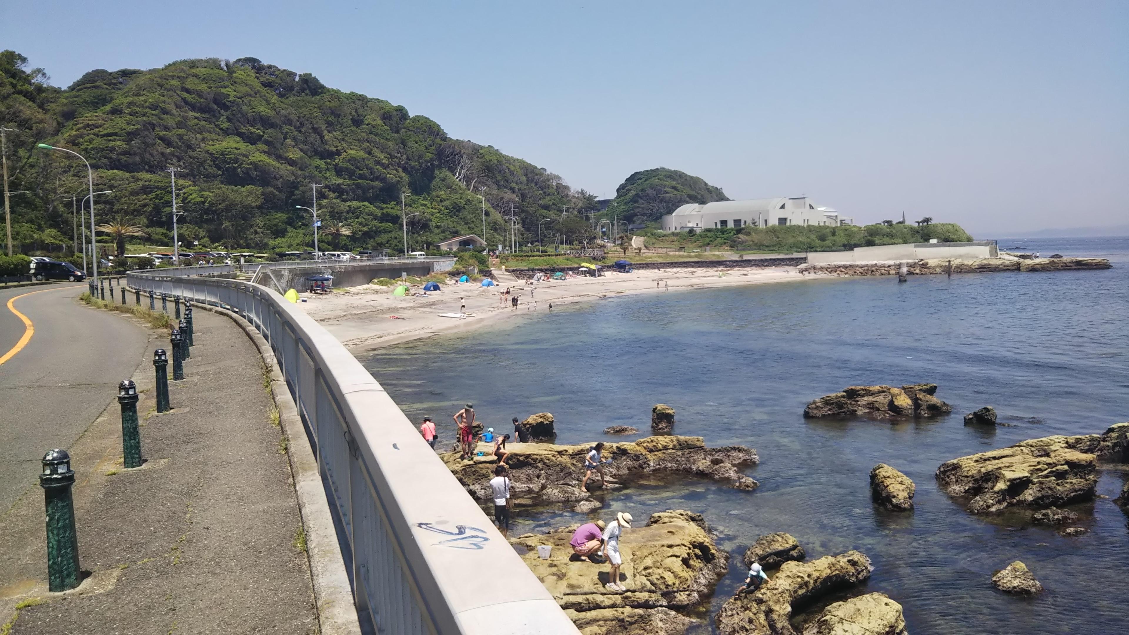 たたら浜と観音崎自然博物館