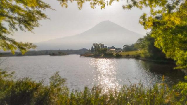 田貫湖から富士山を望む
