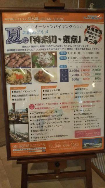 夏の「神奈川・東京」バイキング