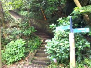 第2駐車場からの近道は階段・岩・泥・落ち葉を覚悟で!