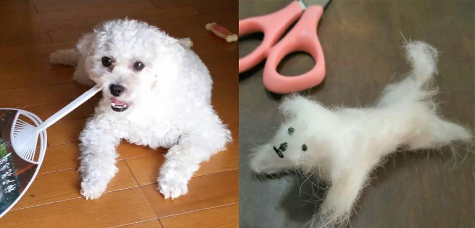 犬と刈った毛で作ったミニ犬