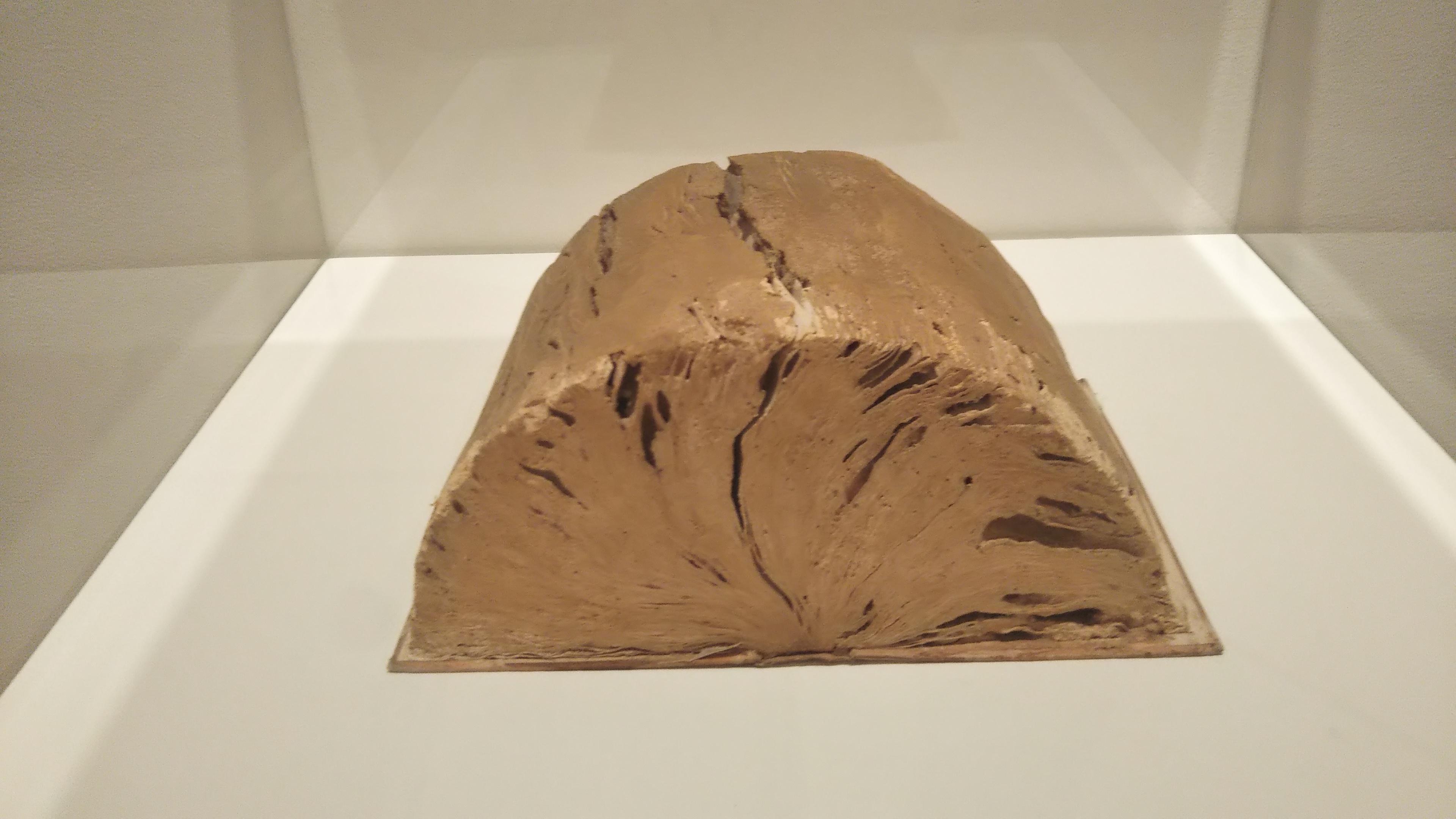 土で塗り固められ化石になったような本