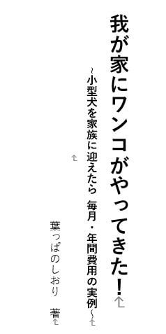 タイトルページ