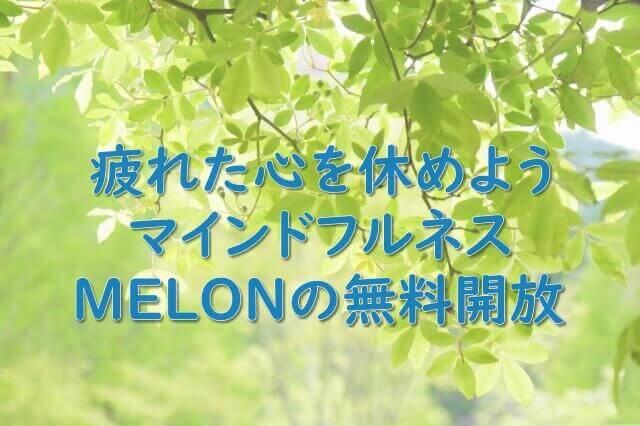 MELON無料開放