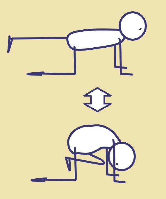体幹を強化する運動