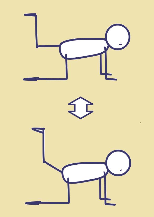 脚力をアップする運動